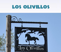 Los Olivillos Gallery Button